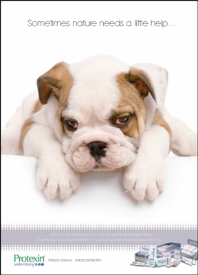 protexin_puppy_ad